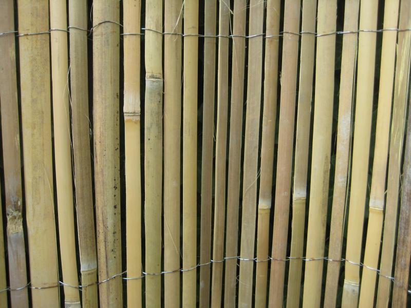 Asphalia en bamboe, een veilige combinatie!