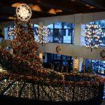 Kerstbomen impregneren verplicht?