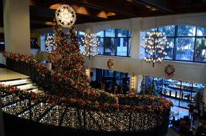 Kerstbomen impregneren verplicht